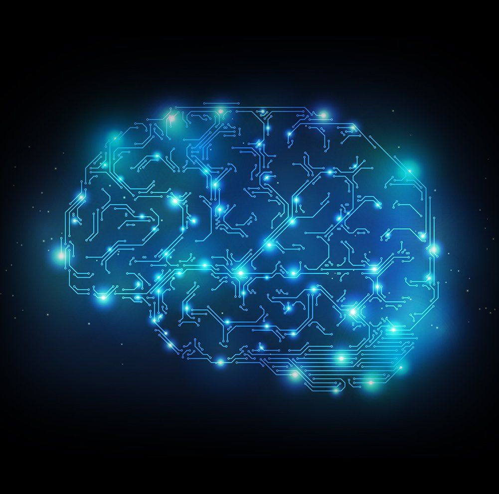 Doktus Brain